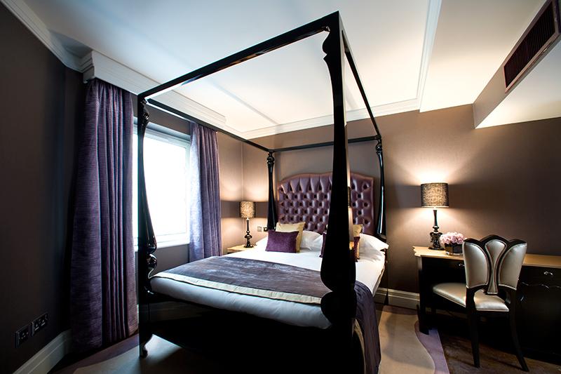 Superior-Purple-Bed